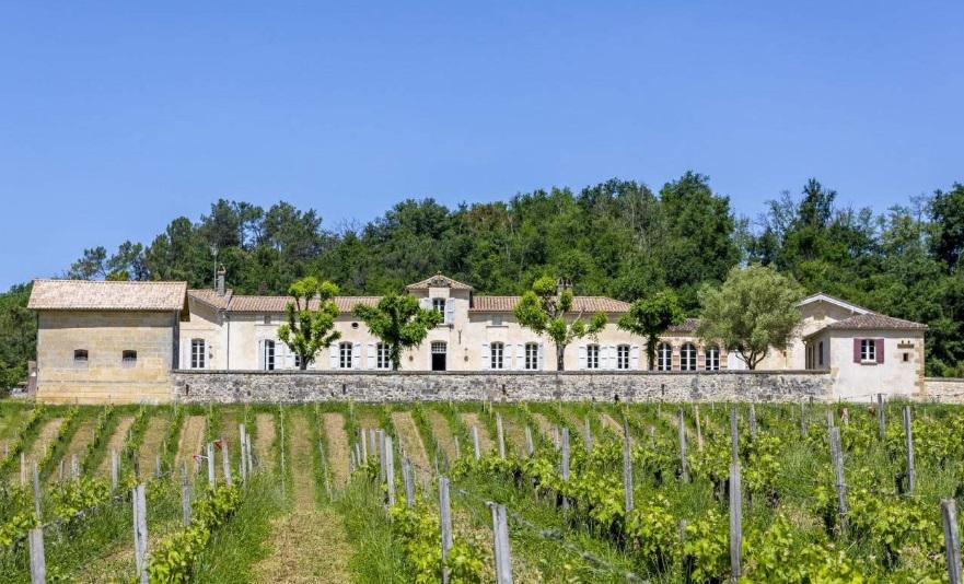 Domaine viticole et vignes