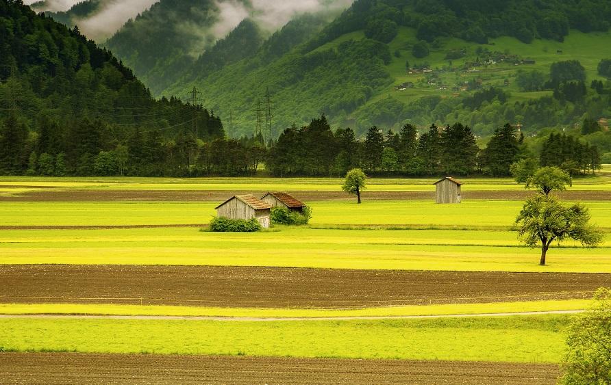 Acheter un terrain agricole : combien coûtent les frais de notaire ?